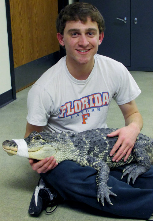Evan Whiting with Alligator