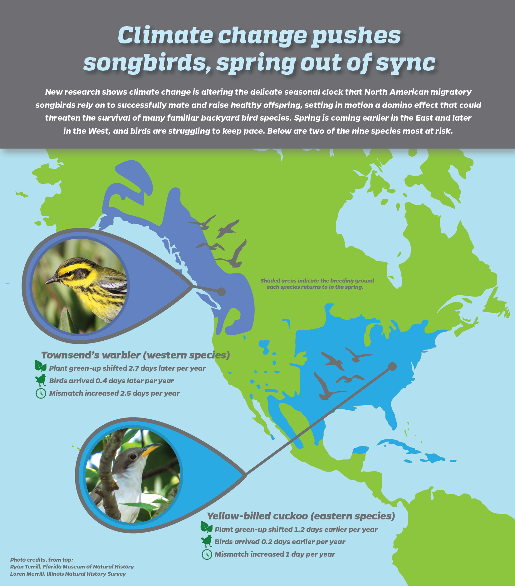 Climate Change Florida Map.05 Migratory Birds Bumped Off Schedule As Climate Change Shifts