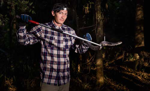 snake researcher holds cottonmouth in the dark