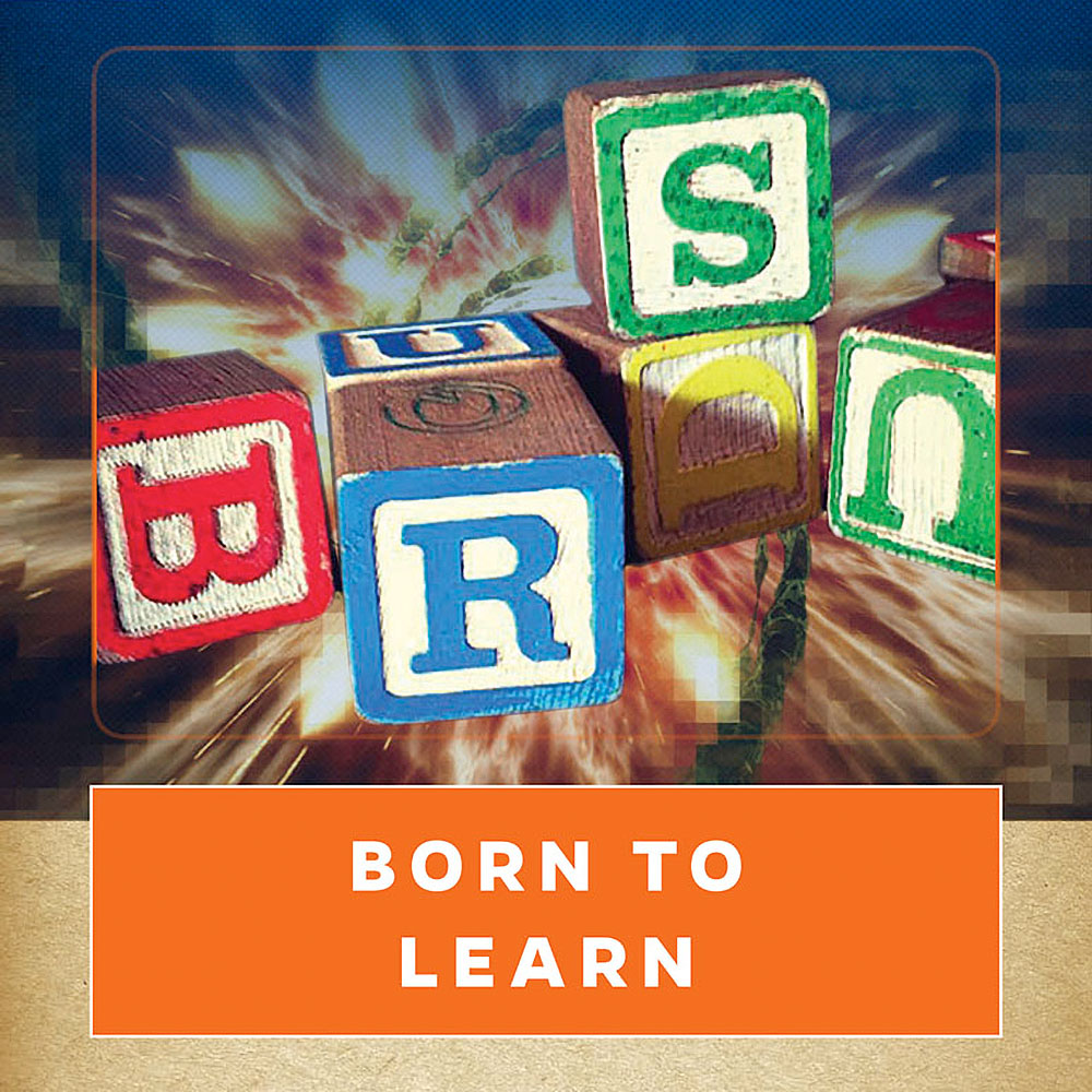 New from GATORBYTES: 'Born to Learn: Innovations in Early Childhood Studies'