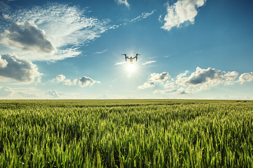 "Tomorrow's farmers likely to be ""data scientists, programmers and robot wranglers"""