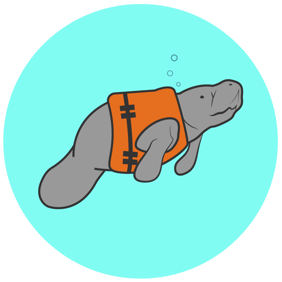 a manatee wears a life jacket in an illustration