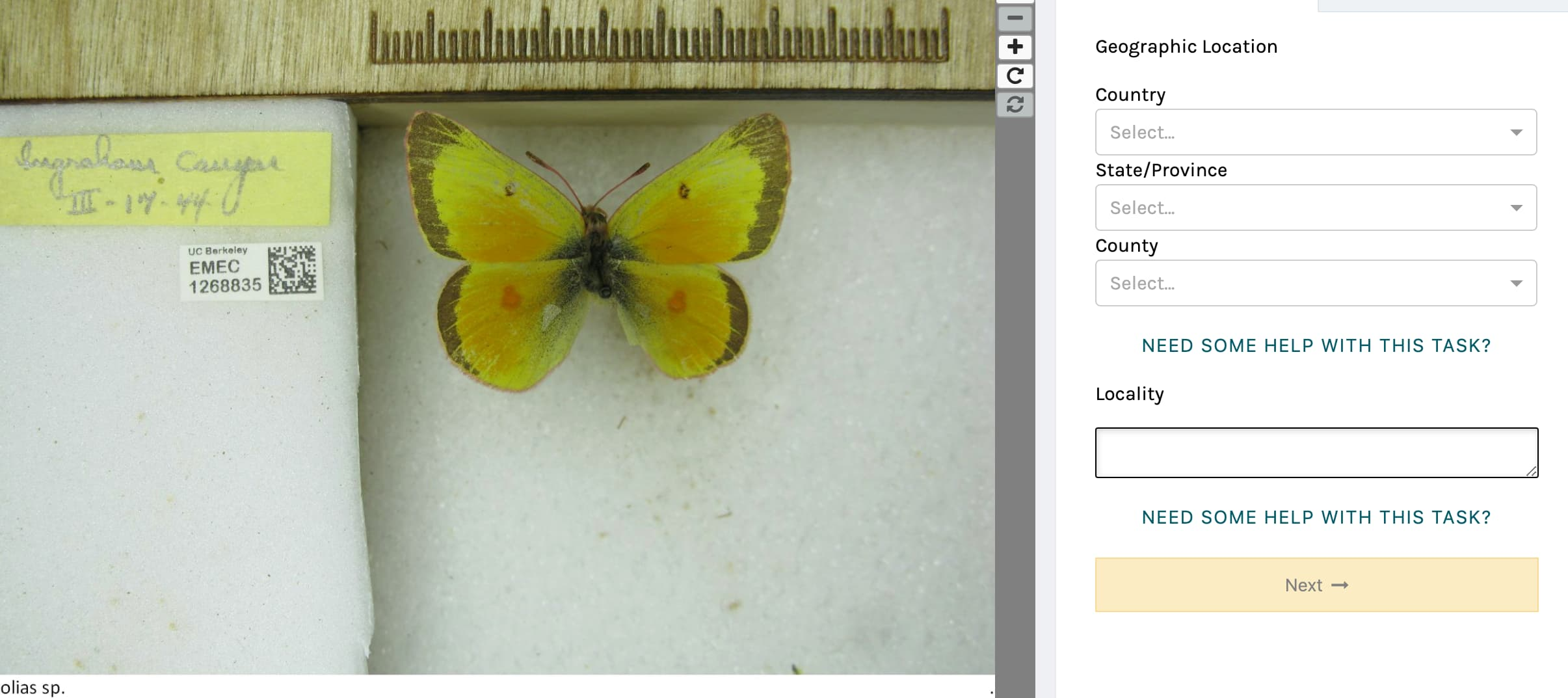 the notes from nature interface with a butterfly specimen