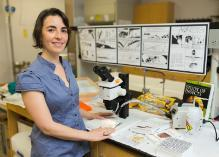 IFAS assistant professor Andrea Lucky and her citizen science specimen collection project, known as the School of Ants.