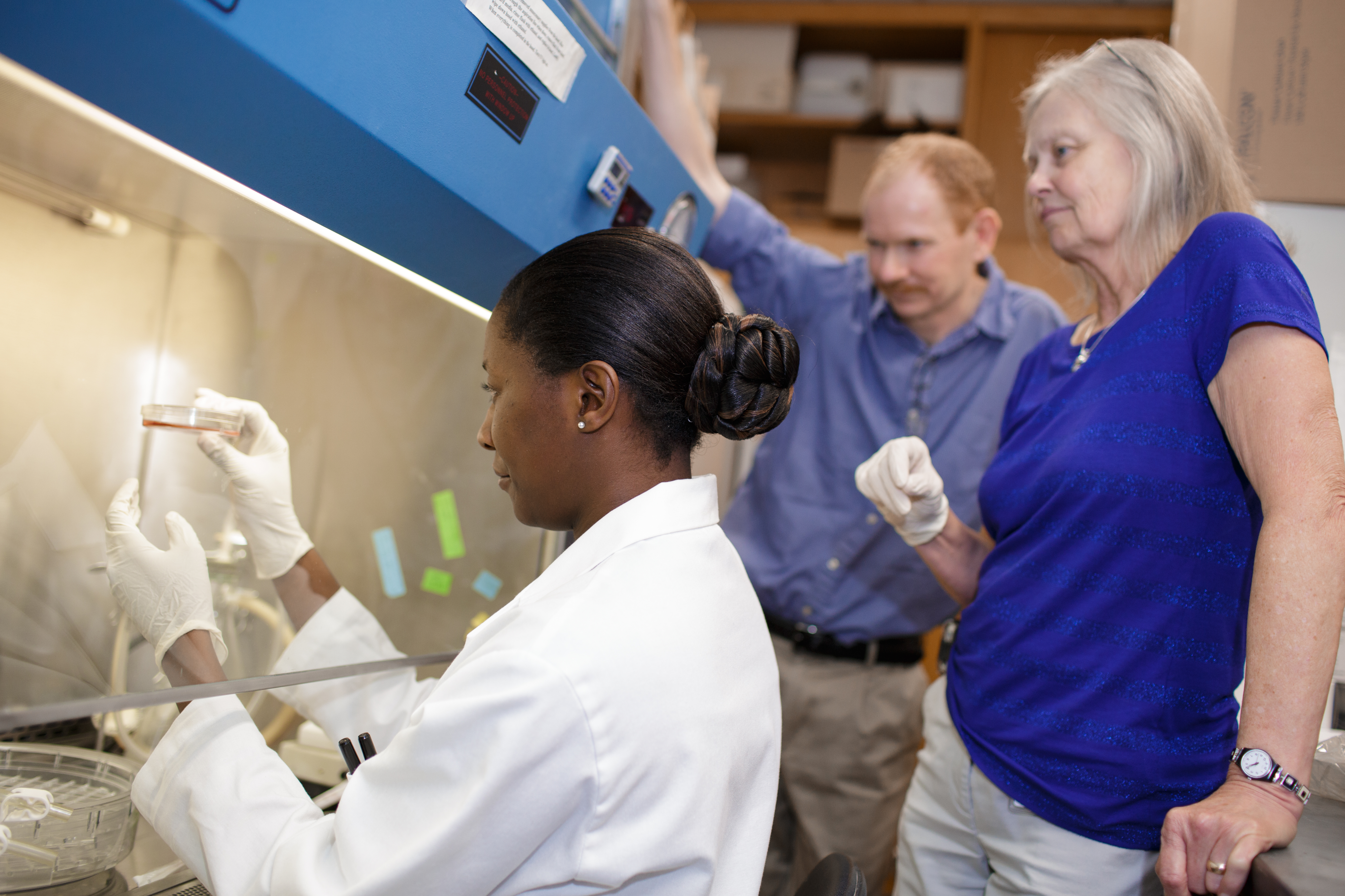 Graduate student Mam Mboge inspects a sample of cancer cells as Robert McKenna, Ph.D., and Susan Frost, Ph.D., look on. McKenna and Frost are professors of biochemistry and molecular biology in the UF College of Medicine. The trio are part of a group of researchers who found that saccharin can inhibit the growth of cancer cells.