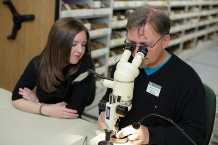 Dr. Heather Walden looks on while John Slapcinsky of UF's Florida Museum of Natural History dissects a snail.
